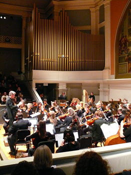 Youth Orchestras of Charlottesville- Albemarle